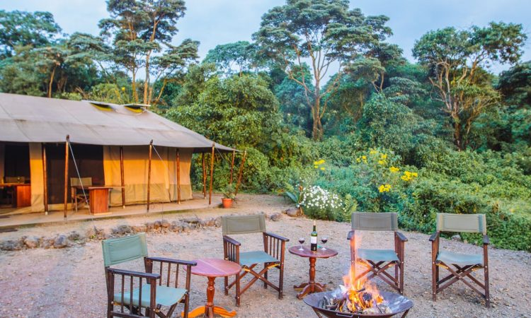 Kibumba Tented Camp