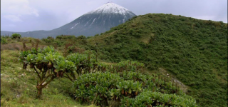 Mount Karisimbi
