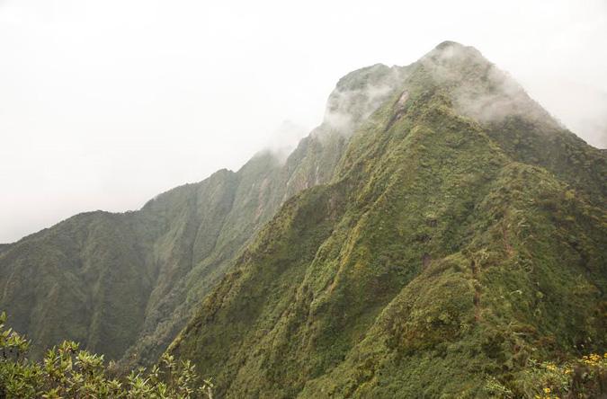 Mount Sabyinyo
