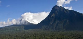 Top Things to do in Virunga National Park