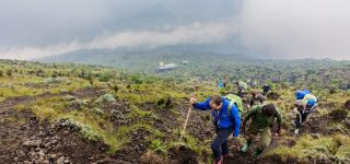 Activities in Goma