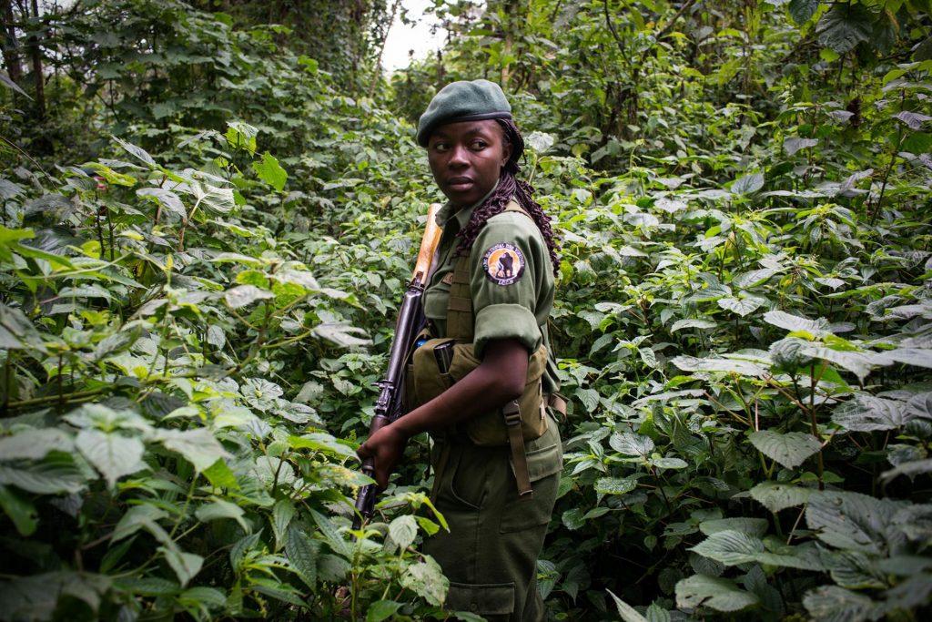 Safety of Virunga National Park:
