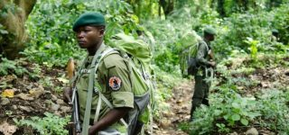 Safety of Virunga National Park