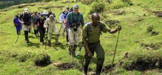 5 Days Mount Nyiragongo & Karisimbi Hike